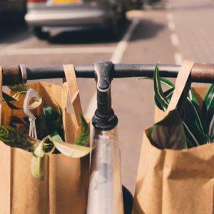 Хартиени пликове и чанти